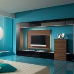 2012 renklı tv unıtesı