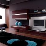 Kahverengi Tv Ünitesi Modeli Cesitleri