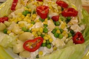 Yaz Salatası , Yaz Salatası Tarifi, Resimli Oktay Usta Yaz Salatası Tarifi Yapılışı