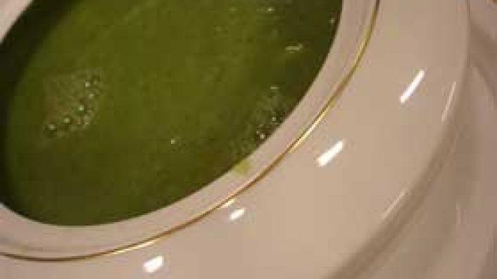 Yeşil Orman Çorbası