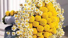 Renkli Gelin Çiçek Modelleri